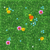 Lawn seamless Stock Images