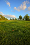 Lawn and sky Royalty Free Stock Photo