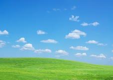 Lawn sky Stock Image
