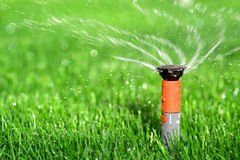 Lawn Sprinkler. Photo of a Lawn Sprinkler Royalty Free Stock Photography