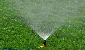 Lawn with Sprinkler Stock Images