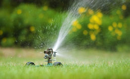 Free Lawn Sprinkler Stock Photo - 20793210
