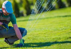Lawn Sprinkler Installation. By Professional Technician. Gardening and landscaping Theme stock photo