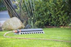 Lawn sprinkler Stock Image