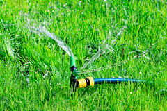 Lawn sprinkler spaying water Stock Photos