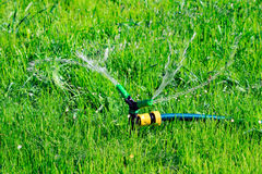 Lawn sprinkler spaying water Stock Photo