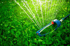 Lawn sprinkler spaying water over green grass. Royalty Free Stock Images