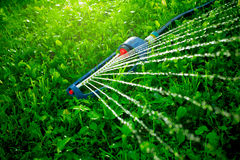 Lawn sprinkler spaying water over green grass. Stock Image