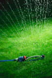 Lawn sprinkler spaying water over green grass. Stock Images