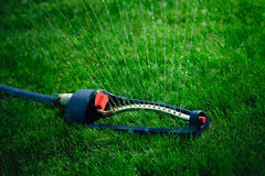 Lawn sprinkler spaying water over green grass. Royalty Free Stock Photo