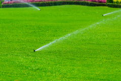 Lawn sprinkler spaying water over green grass. Irrigation system Stock Images
