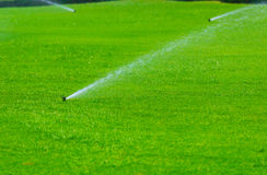 Lawn sprinkler spaying water over green grass. Irrigation system Stock Photos