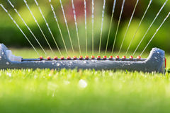Lawn sprinkler spaying water over green grass. Royalty Free Stock Photography