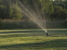 Lawn sprinkler spaying water over green grass. Irrigation system. Blured movement royalty free stock photos