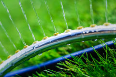 Lawn sprinkler spaying water over green grass Royalty Free Stock Image