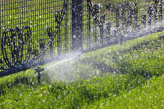 Lawn sprinkler spraying water over green grass and metal fence. Stock Photo