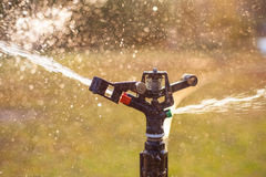 Lawn sprinkler spraying water over green grass Royalty Free Stock Photo