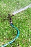 Lawn sprinkler spraying water Stock Images