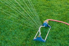 Lawn sprinkler sprays water over green grass royalty free stock photography