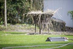 Lawn sprinkler in spring Stock Photography