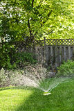 Lawn sprinkler watering grass stock photo