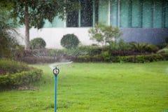 Lawn sprinkler watering grass royalty free stock photos