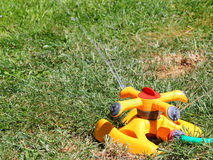 Lawn sprinkler watering the grass in a drought. Royalty Free Stock Images