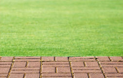 Lawn and step Royalty Free Stock Photos