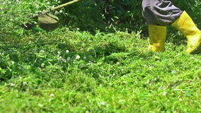 Lawn String Trimmer Cutting stock footage