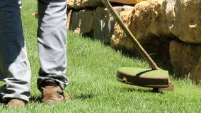 Lawn string trimmer stock video