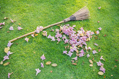 Lawn sweeper Royalty Free Stock Photography