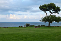 Lawn with trees in the background of the sea Royalty Free Stock Photography