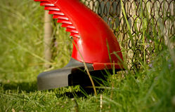 Lawn Trimmer Stock Image
