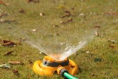 Lawn water sprinkler Stock Image