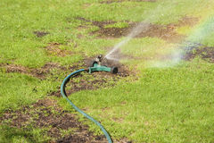 Lawn watering. Watering lawn with patches of new seeding Royalty Free Stock Photography