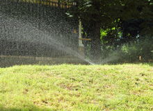 Lawn watering in hot weather Stock Image