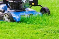Lawnmover blu commovente che taglia erba verde Fotografie Stock Libere da Diritti