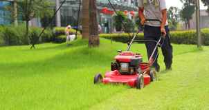 Lawnmower Obrazy Stock