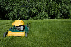 Lawnmower, cutting green grass close-up with space. For copy on the right Stock Image