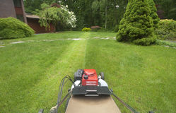 Lawnmower cutting lawn. Lawnmower cutting grass as viewed by operator Stock Photography