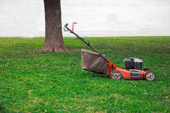 Lawnmower on grass in the garden, tree and white wall on background, a lot of space for text Royalty Free Stock Image
