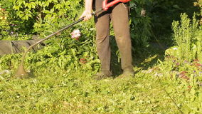 Lawnmower mowing grass. Worker mows green grass manual lawnmower. trimming lawns stock footage