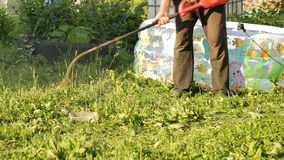 Lawnmower mowing grass stock video footage