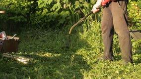 Lawnmower mowing grass stock video