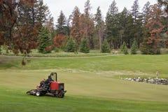 Lawnmower no campo de golfe cercado pela floresta conífera fotografia de stock royalty free