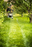 Lawnmower trace Stock Image