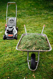 Lawnmower and wheelbarrow with grass on mown lawn Stock Image