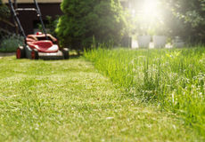 Lawnmowing Obrazy Royalty Free