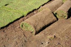 lawnrullar Royaltyfri Foto