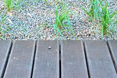 Lawns Royalty Free Stock Photography